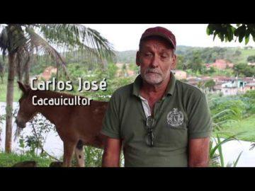 Carlos José e a importância da busca do cacau de qualidade
